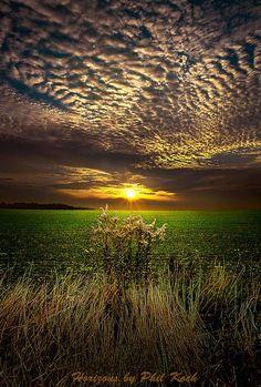 Nascer do sol em Wisconsin por Phil Koch - Sunrises in Wisconsin by Phil Koch