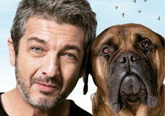 """Cinema: """"Truman"""" estreia e oferece meia-entrada pra quem tem cão!"""