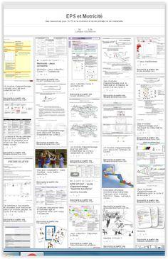 Une base de données avec des dizaines de ressources pour l'EPS et la motricité.