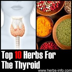 Herbs For Thyroid - detailed list with research, references and background info.