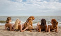 Gorgeous Dogue de Bordeaux and beautiful girls have fun on the beach. Boss, the French Mastiff, wears Light Weight Leather Dog H. Strongest Animal, Action Pictures, Different Dogs, Photographs Of People, Leather Harness, Girl And Dog, Pretty Girls, Dog Breeds, Pets