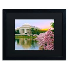 'Cherry Blossoms 2014-6' by CATeyes Framed Photographic Print