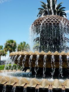 Water fountain at park in Charleston SC