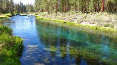 Williamson River. Oregon.
