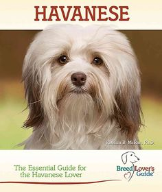 Havanese: A Practical Guide for the Havanese Lover (Hardcover)