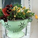 DIY! Paint an old kitchen colander or strainer and use it as a hanging flower basket! You can put a coconut liner inside to keep the dirt from falling out the holes!