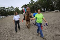 Therapy horses help put traumas out to pasture