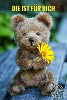Teddy Bear Day, Cute Teddy Bears, Felt Animals, Animals And Pets, Cute Animals, Lekker Dag, Tatty Teddy, Dog Snacks, Smiley