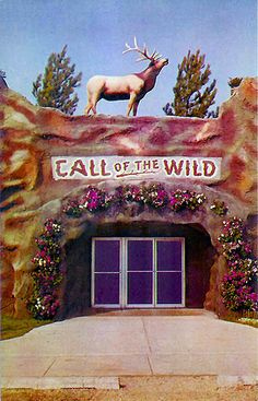 Call of the Wild - Gaylord, Michigan
