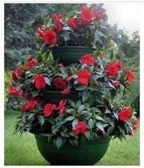 Tiered Flower Pot