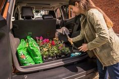 Loading gardening supplies into 2018 EcoSport rear cargo area. Ford Ecosport, 2019 Ford, Ford Company, Happy Birthday Pictures, Blue Candy, Compact Suv, Black Shadow, Gardening Supplies, Ford Explorer
