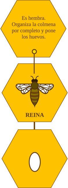 Plan Bee te invita a polinizar Chile: Aquí encontrarás una guía de lo que puedes plantar para ayudar a proteger a las abejas a lo largo del país