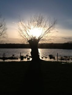 Sunset over a flooded Iffley Meadow, during the January 2014 floods, viewed from the Isis Farmhouse