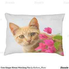 Cute Ginger Kitten Watching You Large Dog Bed