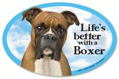 Boxer Oval Dog Magnet for Cars - http://www.thepuppy.org/boxer-oval-dog-magnet-for-cars/