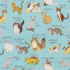 blue Kokka double gauze cute cat animal with name fabric from Japan