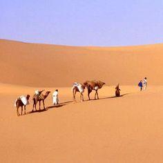 Parmi les moyens de transport efficaces, silencieux, écologiques et attachants, le chameau figure en bonne place. Voyager à travers le désert : oui. Mais voyager en méharée à la manière de véritables touaregs : c'est mieux. Les perspectives changent, mais c'est aussi le rythme du voyage qui se trouve modifié. L'allure lente de l'animal permet de profiter des nuances des sites.  Le prix : très variable en fonction du désert que vous choisirez