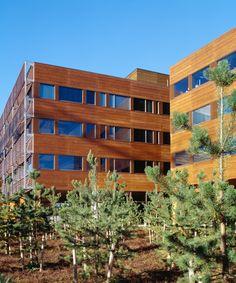 edificio #legno #wood