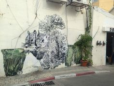 Squirrels from Tel Aviv