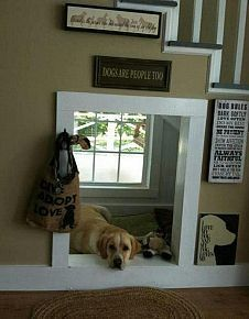 This is so cool. Doggie room under stairs with a window :)