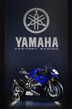68 Best Yamaha Yzf R6 Images In 2019 Sport Motorcycles Sportbikes