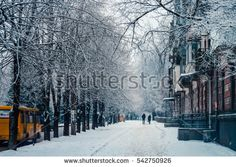 Winter streets of big cities, people, trees, frost