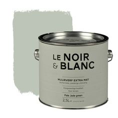 Le Noir & Blanc muurverf extra mat pale jade green 2,5 l   Muurverf kleur   Muurverf   Verf & verfbenodigdheden   KARWEI