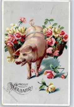 Prägedruck Schwein: Ansichtskarten-Center Onlineshop