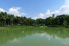 Apple Valley Park, Maggotty, St. Elizabeth, Jamaica