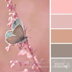 Gallery.ru / Фото #187 - сочетание цвета оттенки сирени и фиолетового - semynova