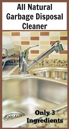 18 delightful clean garbage disposal images household tips rh pinterest com
