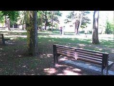 2 Parque de los Llanos Estella Lizarra Navarra 1 - 144256  Estella Lizarra Ciudad Medieval en Navarra  http://parquelosdesvelados-calaverasestella.blogspot.com.es/  http://estellalizarra-ciudadmedieval.blogspot.com.es/  www.casaruralnavarra-urbasaurederra.com  http://elcaminodesantiago-estellalizarra.blogspot.com.es  http://nacedero-rio-urederra.blogspot.com.es/