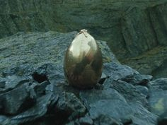 The golden egg was a magical device and the goal of the First Task of the Triwizard Tournament...