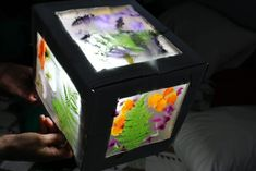 3D nature suncatcher lightbox