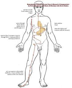 The Kidney Meridian Chart is one of the twelve major