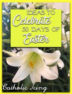 Celebrating The Entire Easter Season With Catholic Kids- All 50 Days! Easter activities Celebrating The Entire Easter Season With Catholic Kids- All 50 Days! Catholic Icing, Catholic Easter, Catholic Crafts, Easter Religious, Catholic Kids, Catholic Blogs, Seasons Activities, Easter Activities