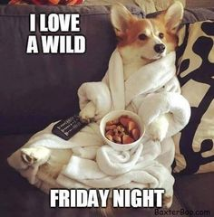 This bathrobe needs a hoodie! 😂