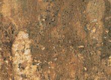 Bronze Allure | Cesare-magnus