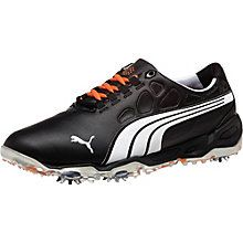 golf shoes for next year.