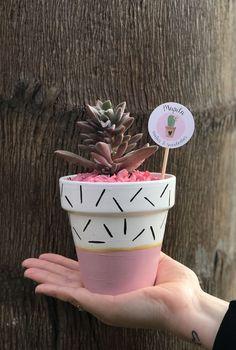 Mapila cactus y suculentas Painted Plant Pots, Painted Flower Pots, Flower Pot Design, Flower Pot Crafts, Cactus Y Suculentas, Diy Décoration, Succulent Pots, Succulents, Diy Planters