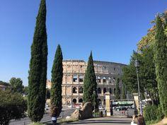 Dia esplendoroso em Roma! #roma #rome #receitaitaliana #receitas #receita #recipe #ricetta #cibo #culinaria #italia #italy #cozinha #belezza #beleza #viagem #travel #beauty #buongiornoroma #igersroma #noidiroma #viagemestadao #colosseum #coliseu #colosseo