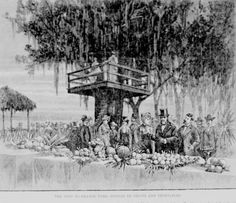 Grant visited Florida in January, Orange Park, Green Park, Vintage Florida, Old Florida, Green Cove Springs Florida, Florida Pictures, Clay County, Florida Oranges, Visit Florida