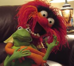 animal the muppet and kermit.