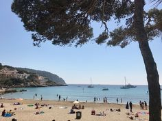 Die schönsten Restaurants mit Meerblick auf Mallorca - COOKIES FOR MY SOUL Restaurants, Beach, Places, Outdoor, Environment, Spain, Island, Majorca, Nice Asses