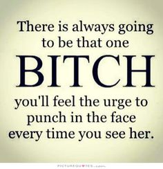 There is always going to be that one bitch you'll feel the urge to punch in the face every time you see her. Picture Quotes.