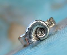 Minimalist Jewelry, Minimallist Silver Ring, Small Beach Seashell Ring, Silver Shell Ring, Simple Ring, Sizes 4 5 6 7 8 9 10 11 12 13 14