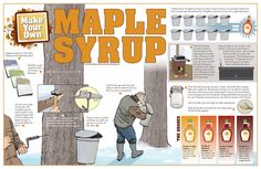 Make your own Maple Syrup step by step. Or just visit the Kennebec Valley on Maine's Maple Sunday, March 24, 2013.