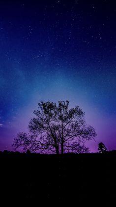 Tree, galaxy, sky, silhouette, 2160x3840 wallpaper