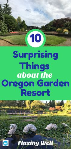 The Oregon Garden resort is full of surprises and delights. If you need a relaxing getaway, consider traveling to this rural Oregon gem. Oregon Road Trip, Oregon Trail, Oregon Coast, Travel Usa, Travel Tips, Craftsman Style Bungalow, Oregon Garden, Visit Oregon, Oregon Waterfalls