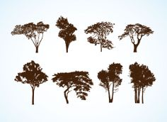 Free Vector Trees. these are actually free easy open in illustrator!